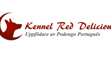 Logo_Red_Del_Demo