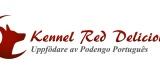 Logo_Red_Del_Demo
